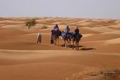 Thumb_frauenreise-kameltrekking-tunesien-duenen-ohne-ende