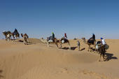 Thumb_frauenreise-kameltrekking-tunesien-karawane-blauer-himmel