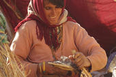 Thumb_frauenreise-kameltrekking-tunesien-nomadin-bei-der-arbeit