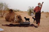 Thumb_frauenreise-kameltrekking-tunesien-nomadin